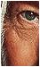 Blackhole • Foro basado en el mundo de Marvel. [ Elite ] Afiliaciones2copy