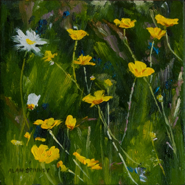 Buttercups, oil on canvas Buttercups_MG_3662fb