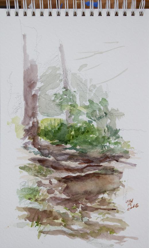 Centennial park watercolour sketches CentParkpath1_MG_3872fb