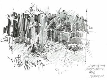 Plein air pen and pencil sketches July21StoneyCreeksm
