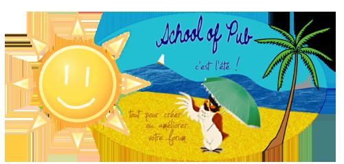 School Of Pub, Forum d'entraide - Page 2 Bann_pub