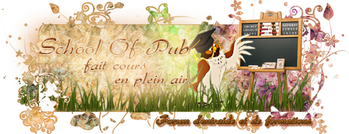 School Of Pub, Forum d'entraide Bann_red