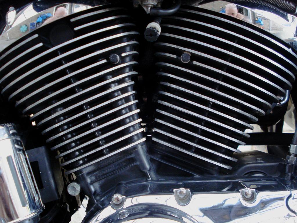 Fins Cleaned,  Barrels Blacked DSC07894_zps1f0e2a46