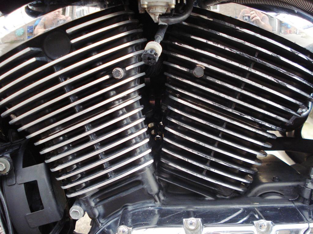 Fins Cleaned,  Barrels Blacked DSC07897_zps17e094df