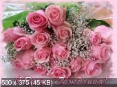 Поздравляем с Днем Рождения Ольгу (Oleyka) B98185cba5b52bb4d8b3d64ea1b65200