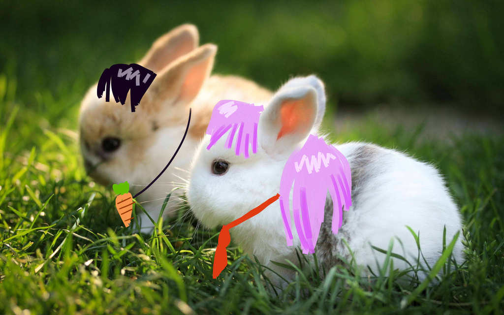 photo two-bunnies-wallpapers-pictures-photos-images_zps9pn94jir.jpg