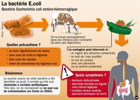 DEPOPULATION VIA LES OGM, LES PESTICIDES, LA DEFORESTATION ET LA POLLUTION DE NOTRE NOURRITURE ET DE NOS EAUX - Page 2 EColi3