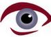 2011 : PUCES IMPLANTABLES, RFID, NANOTECHNOLOGIES, NEUROSCIENCES, N.B.I.C. ET CYBERNETIQUE ! - Page 2 Oeil
