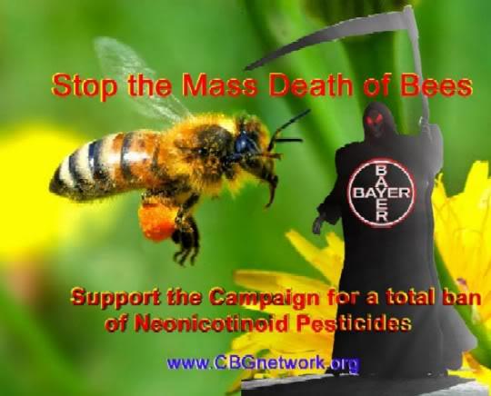 DEPOPULATION VIA LES OGM, LES PESTICIDES, LA DEFORESTATION ET LA POLLUTION DE NOTRE NOURRITURE ET DE NOS EAUX Bees_bayer_death2
