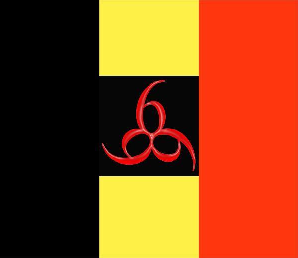 2011 : PUCES IMPLANTABLES, RFID, NANOTECHNOLOGIES, NEUROSCIENCES, N.B.I.C. ET CYBERNETIQUE ! - Page 2 Belgium-flag_666