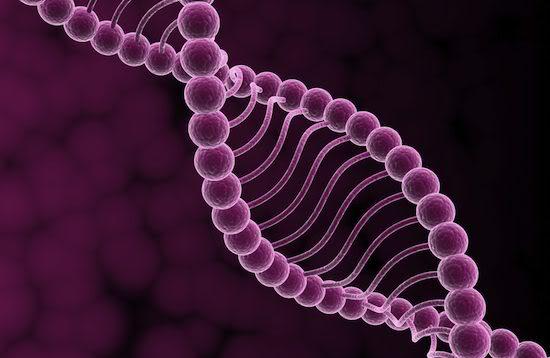 LA BIOLOGIE SYNTHETIQUE ET SES CONSEQUENCES FUNESTES Dna-synthetic-life