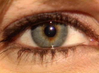 2011 : PUCES IMPLANTABLES, RFID, NANOTECHNOLOGIES, NEUROSCIENCES, N.B.I.C. ET CYBERNETIQUE ! - Page 2 Eye
