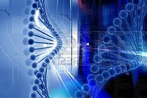 2012 : PISTAGE DES CITOYENS : SATELLITES, CAMERAS, SCANNERS, BASES DE DONNEES, IDENTITE & BIOMETRIE ADN