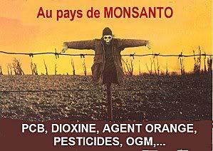DEPOPULATION VIA LES OGM, LES PESTICIDES, LA DEFORESTATION ET LA POLLUTION DE NOTRE NOURRITURE ET DE NOS EAUX - Page 3 Au_pays_de_Monsanto-2