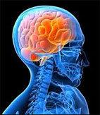 2012 : PUCES IMPLANTABLES, RFID, NANOTECHNOLOGIES, NEUROSCIENCES, N.B.I.C., TRANSHUMANISME  ET CYBERNETIQUE ! Cerveaupirate