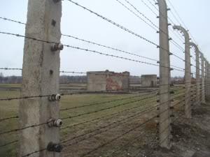 FASCISME, DICTATURE, ETAT-POLICIER, TERRORISME D'ETAT - Page 5 Birkenau-fence-300x225