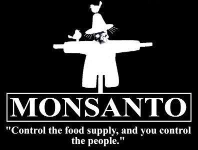 DEPOPULATION VIA LES OGM, LES PESTICIDES, LA DEFORESTATION ET LA POLLUTION DE NOTRE NOURRITURE ET DE NOS EAUX - Page 3 Monsanto2