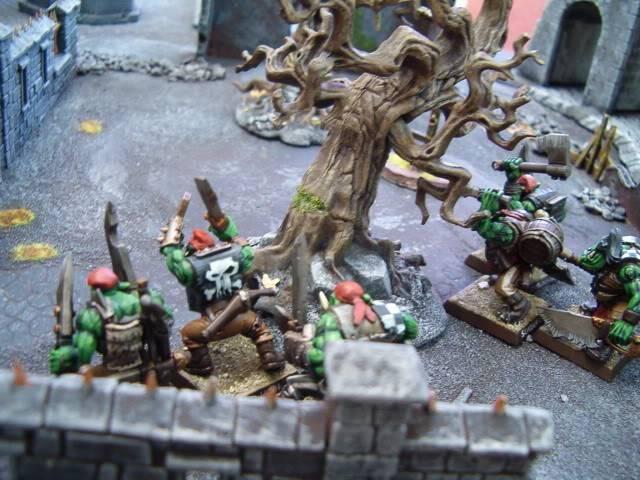 Trees?  HPIM6758
