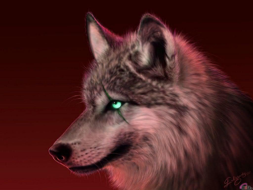 Twilight RPG registration Wolf2-1