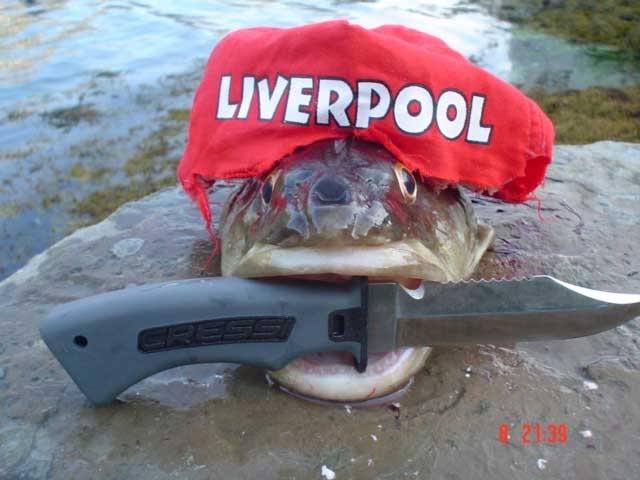 ___ EL BAÑO ___ Liverpool-hooligan-torsk