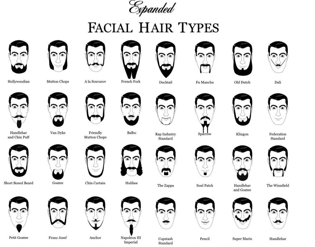 Return of the Beard Beardtypes1