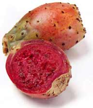 Photos of not-so-common foods fed -- Fun Fruits and Vegetables PricklyPear_zpsa877ce25