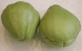 Photos of not-so-common foods fed -- Fun Fruits and Vegetables Chayote_zps4b86960a