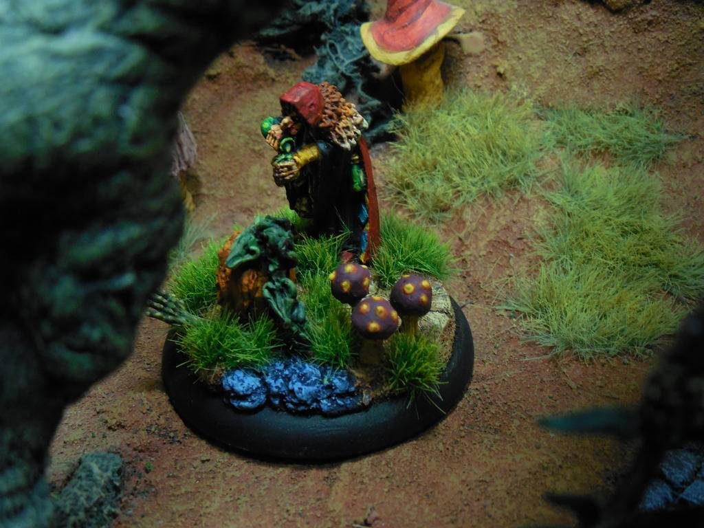 DeafNala's Gallery of Rogues, Scoundrels, & Miscreant - Page 8 DSCN3600