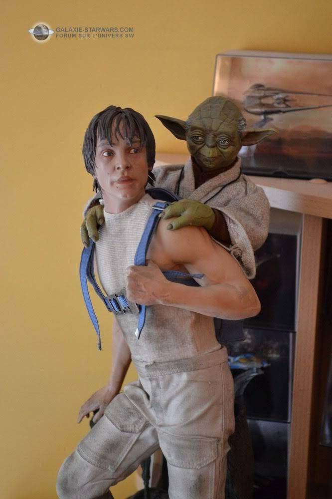 Luke & Yoda - Dagobah Training 1/4 Premium - Page 2 DSC_0150