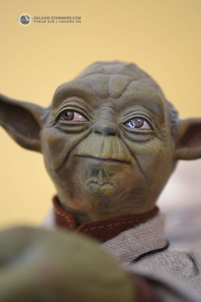 Luke & Yoda - Dagobah Training 1/4 Premium - Page 2 DSC_0158