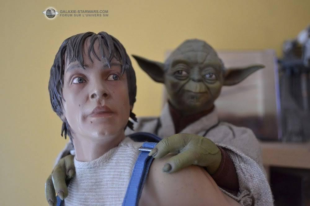 Luke & Yoda - Dagobah Training 1/4 Premium - Page 2 DSC_0163
