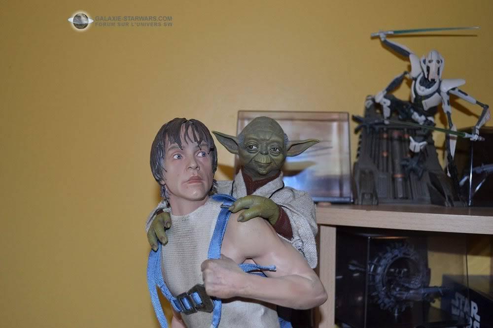 Luke & Yoda - Dagobah Training 1/4 Premium - Page 2 DSC_0168-1