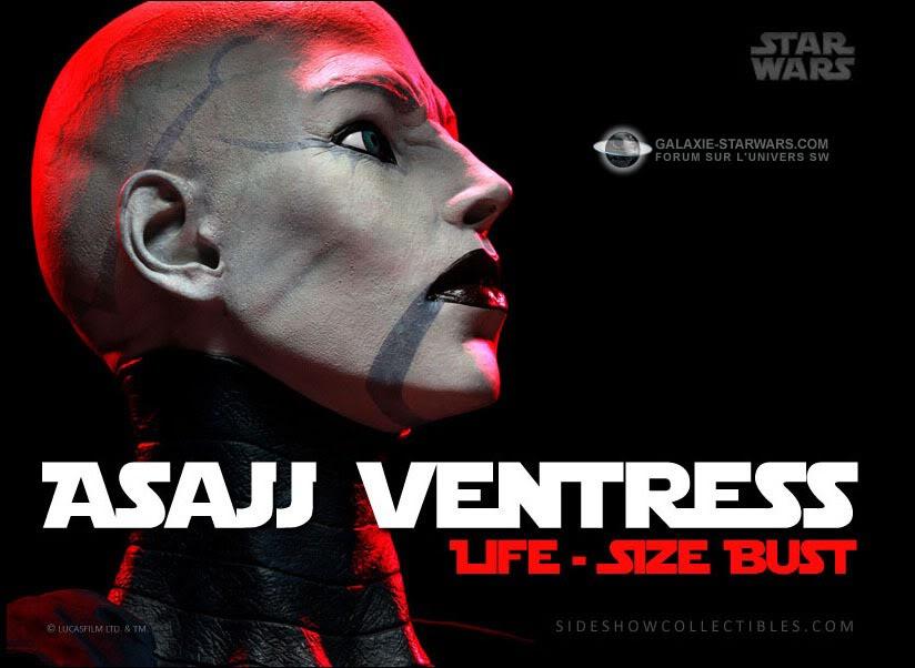 Sideshow - Asajj Ventress - Life Size Bust Asajj-1