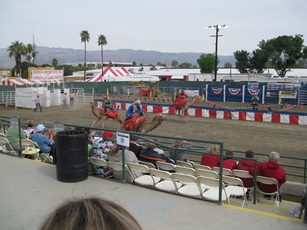 Riverside County Fair! 7d4fc19d