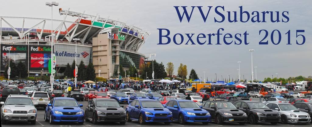 BoxerFest Pics! 1_zpsxyxnocyi