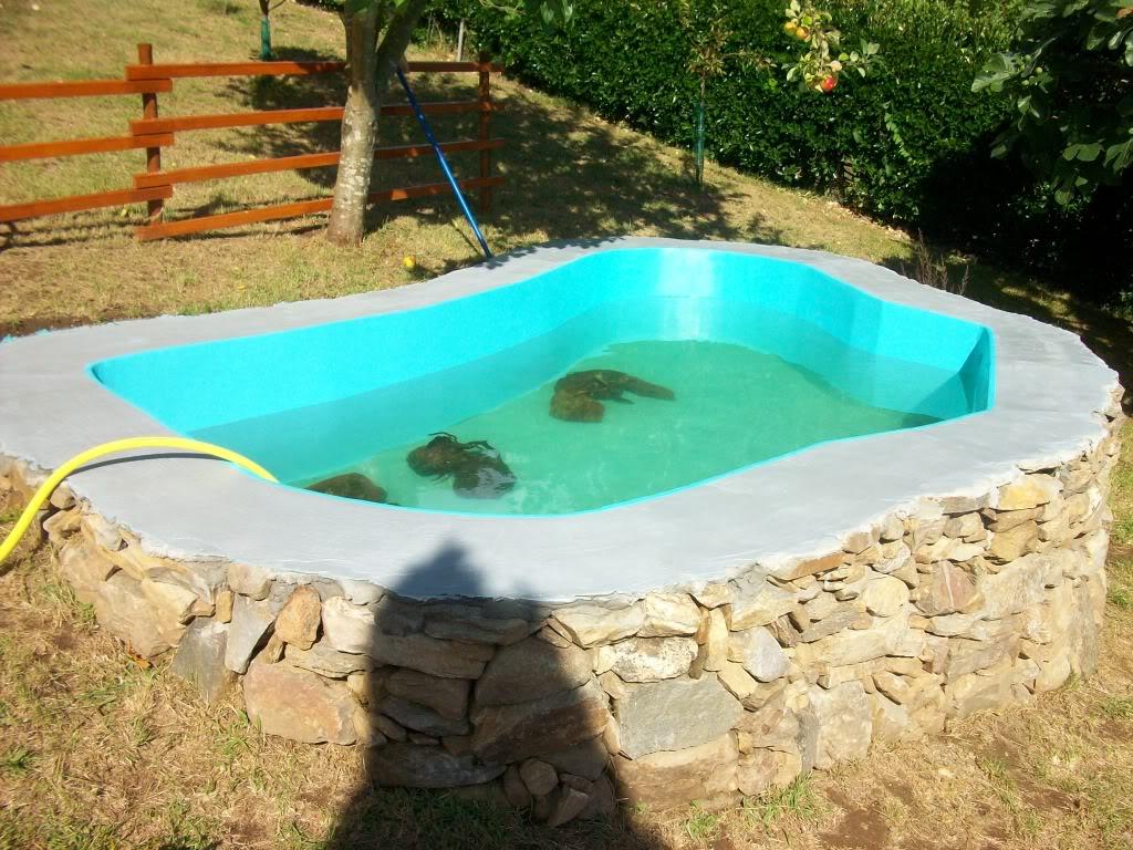 Estanque de carassius auratus 6000 litros - Como se hace una piscina ...