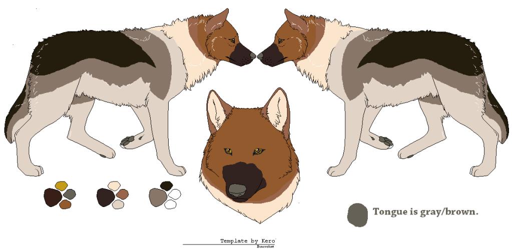 Suplji Plakati Wolf Pack (Open) Orla