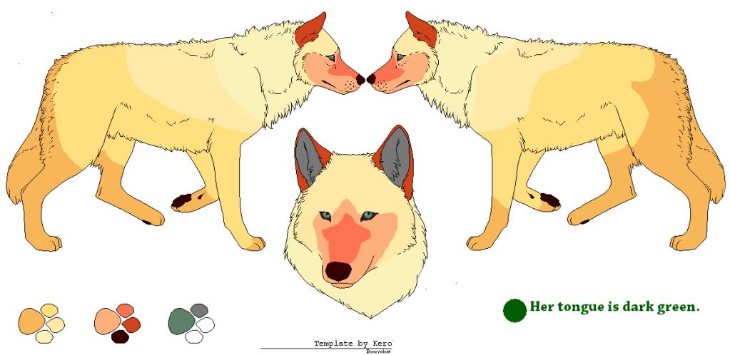 Suplji Plakati Wolf Pack (Open) Zivota