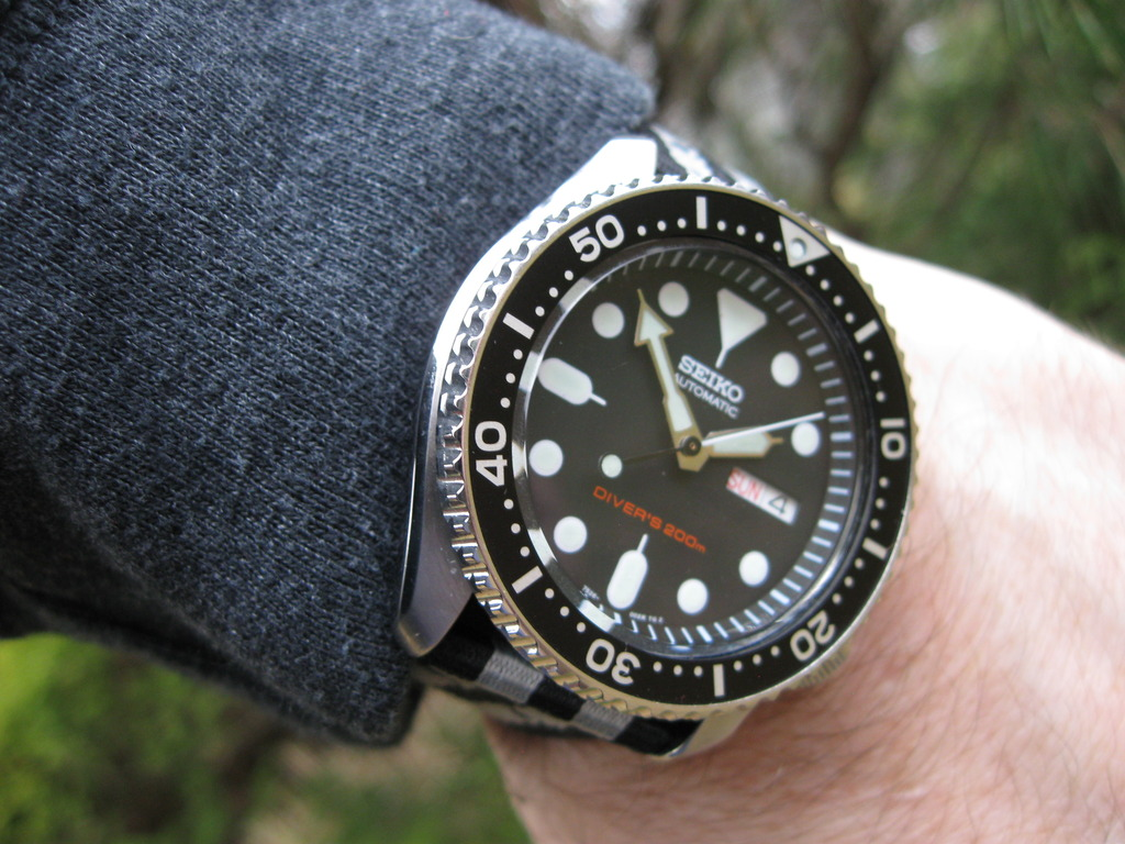 DWC Auction/donation watch  IMG_3149_zpsdz9hy0ne