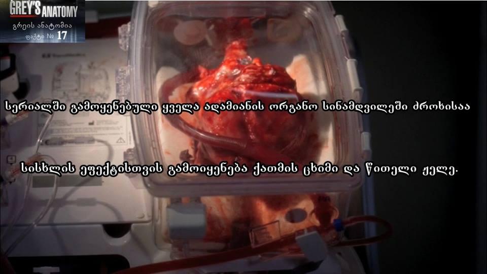 Grey's Anatomy-გრეის ანატომია - Page 22 54b30a265dbe1fb9f3e73a97dd377225