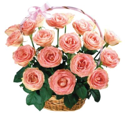 Поздравляем с Днем Рождения Анастасию (Анастасья 81) 85ffbaba2e829ecdc6e9740d6132d76e