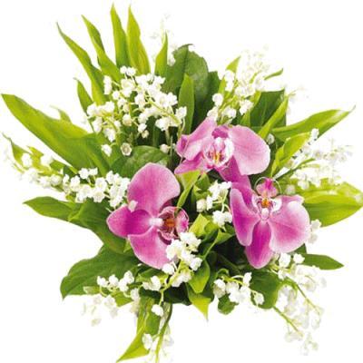 Поздравляем с Днем Рождения Татьяну ( tata28) 27c4167f4f2b662aeba9cfa99c186daf