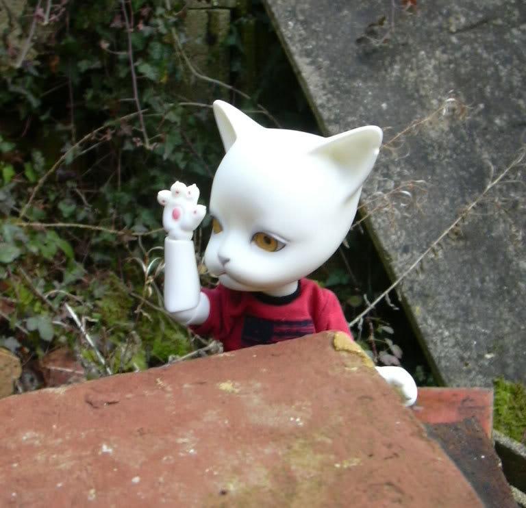 Les BJD de chaton : nouveau venu en P5 et sa petite story ^^ DSCN0173-1