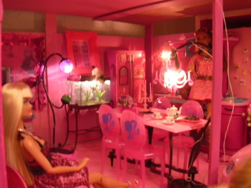 Dollhouse taille PKF DSCN0019