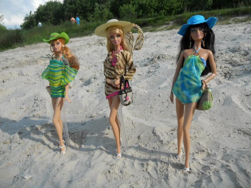 Let's go to the beach ! DSCN0672_zps89559f3b