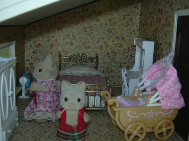 collection de chaton DSCN0191