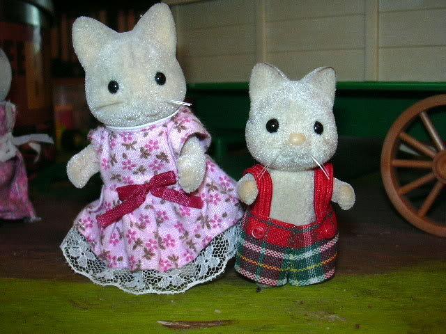 collection de chaton DSCN0306
