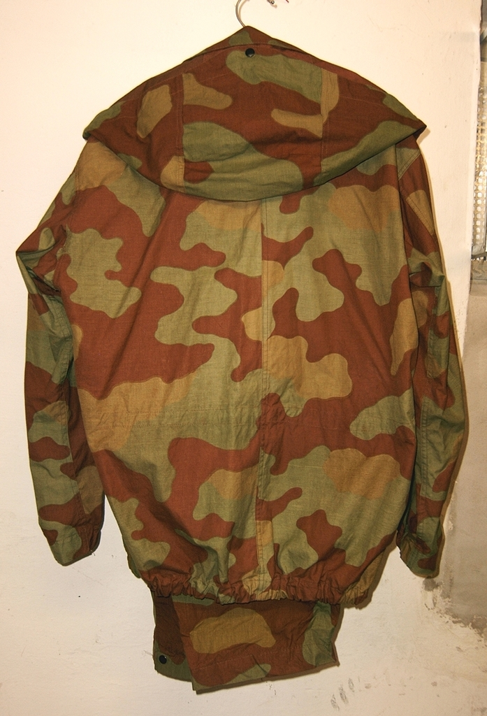 Italian camo in my collection 03_zpsia3viuwd