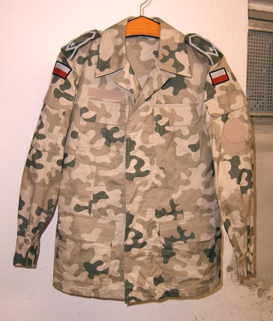 Polish Desert Pantera wz2000 Uniform 01_zpsi4cog7v5