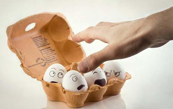 Những hình ảnh ngộ nghĩnh Egg-06